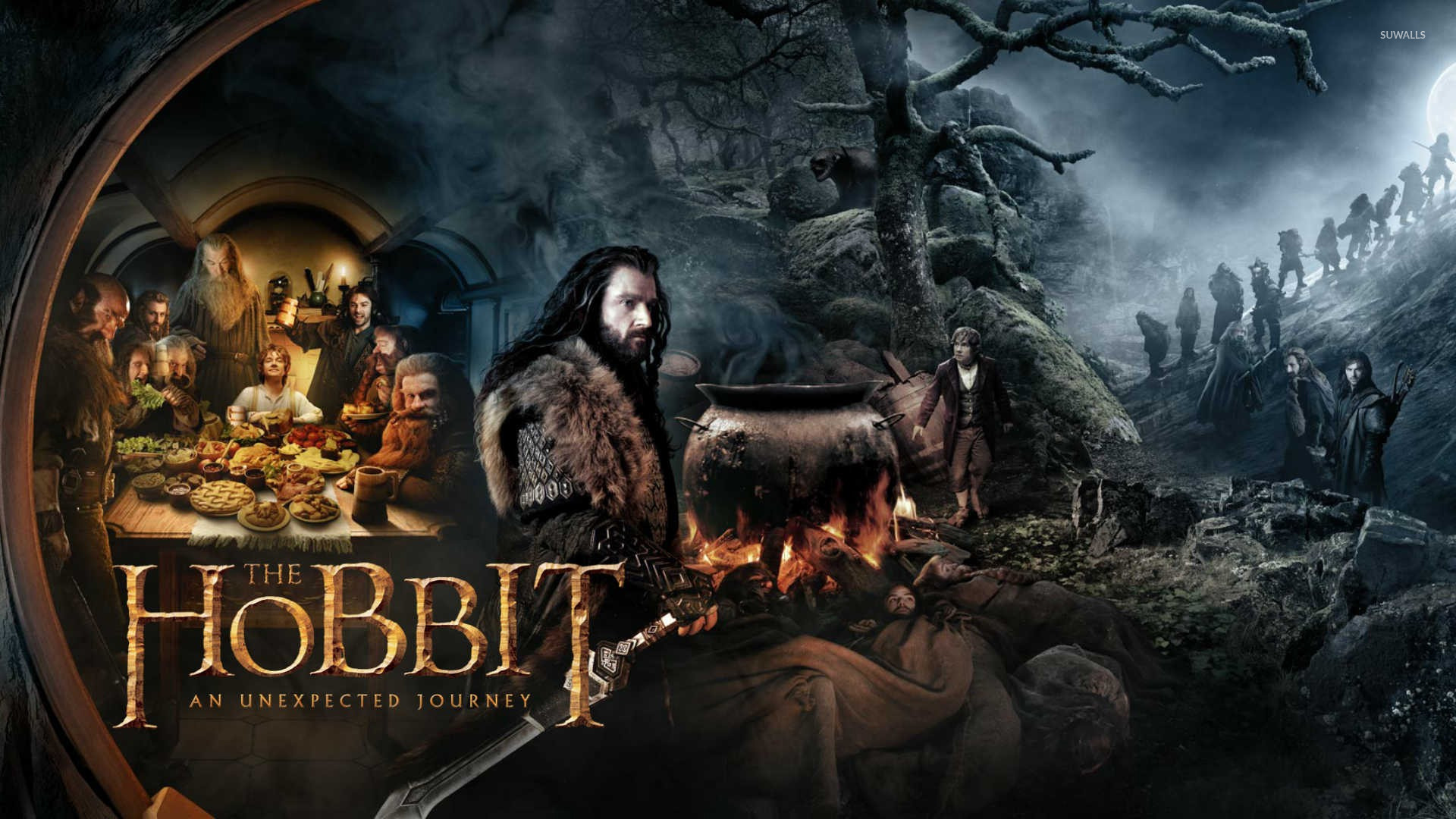 The Hobbit An Unexpected Journey [7] wallpaper   Movie wallpapers 1920x1080