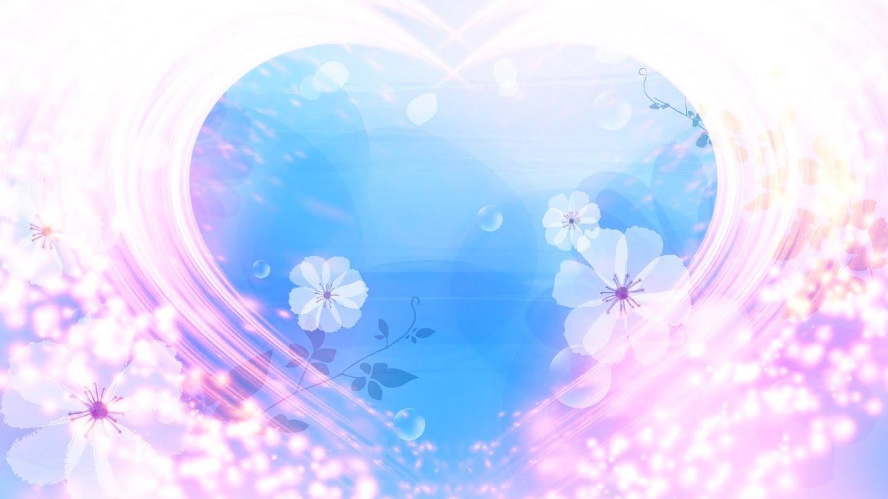 FLOWER LOVE PARTICLES CLEAN VIDEO BACKGROUND FREE DMX HD BG 429 1280x720