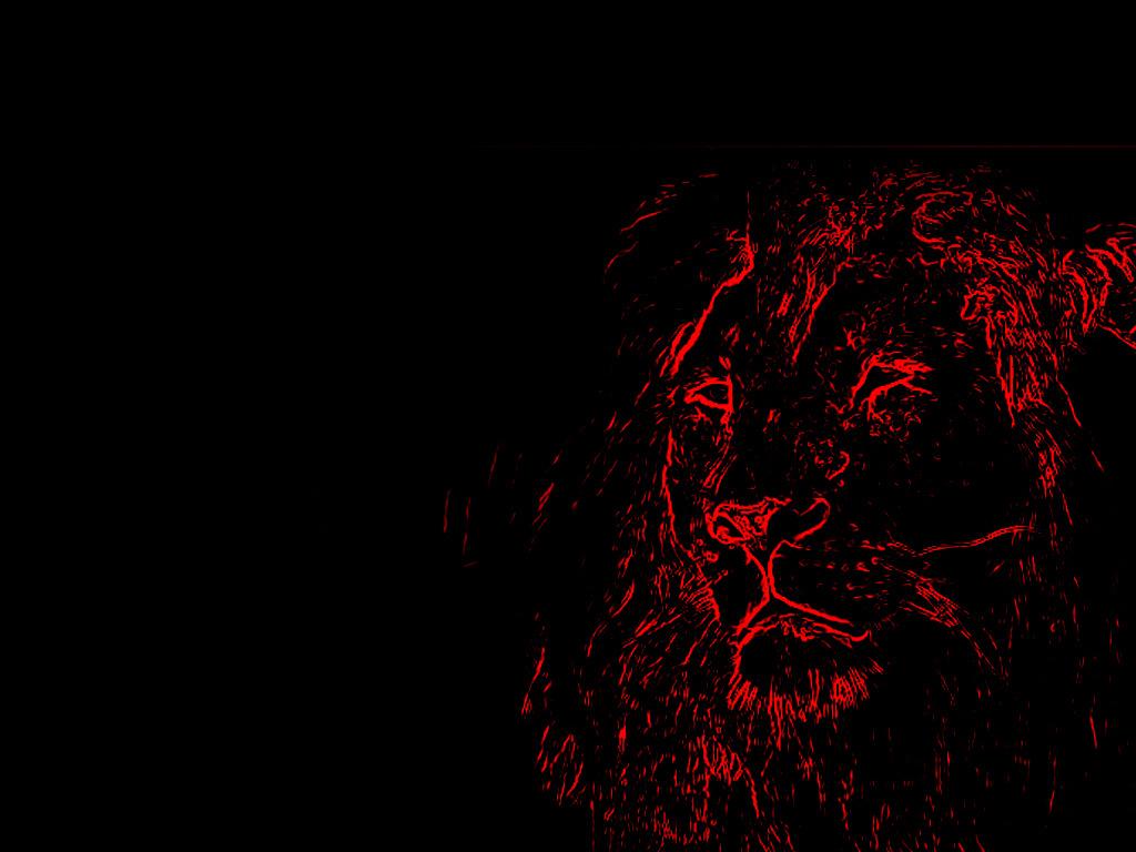 sanny lion best wallpaper 2015 wallpapersafari