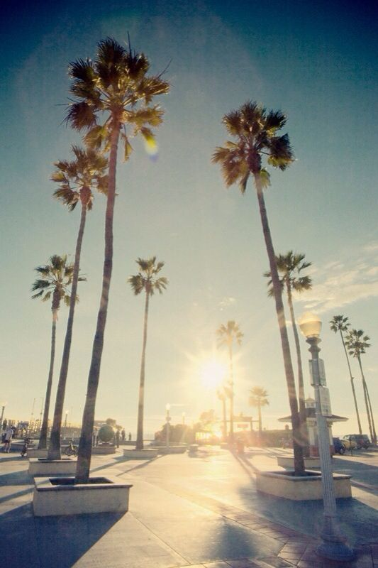 California iPhone Wallpaper 533x800