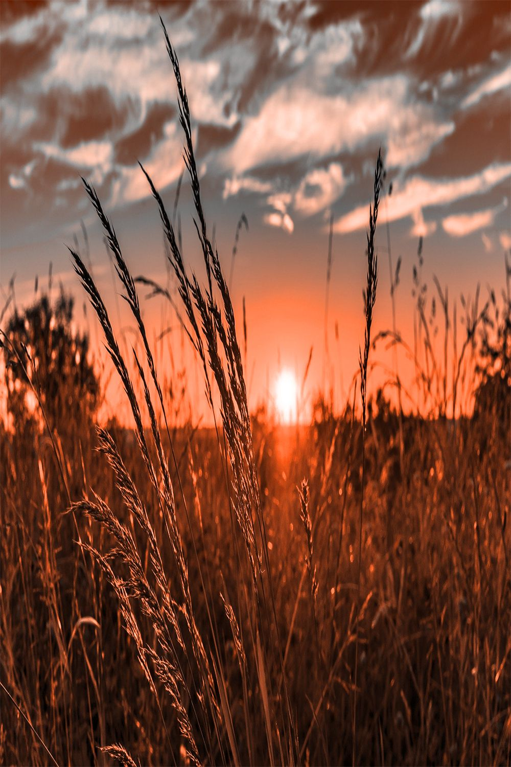 Sunset Wallpaper Sunset wallpaper Western photography Country 1000x1500