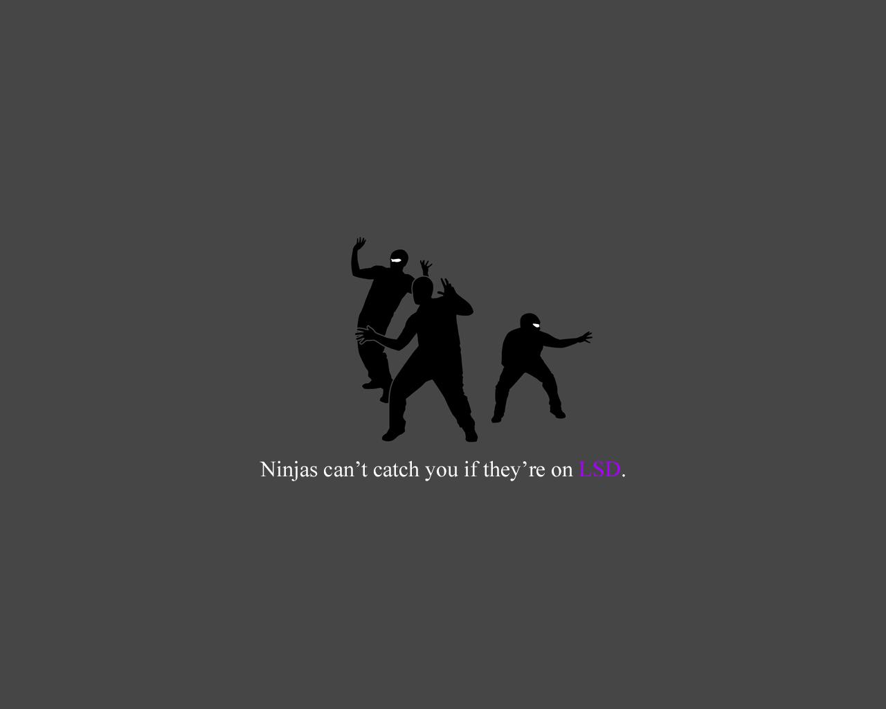 ninja Wallpaper Background 30303 1280x1024