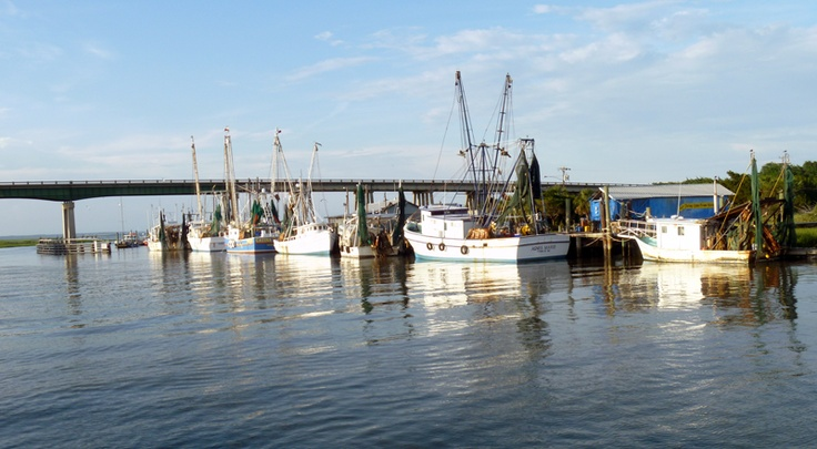 shrimp boats with the lazaretto creek bridge in the background 736x405