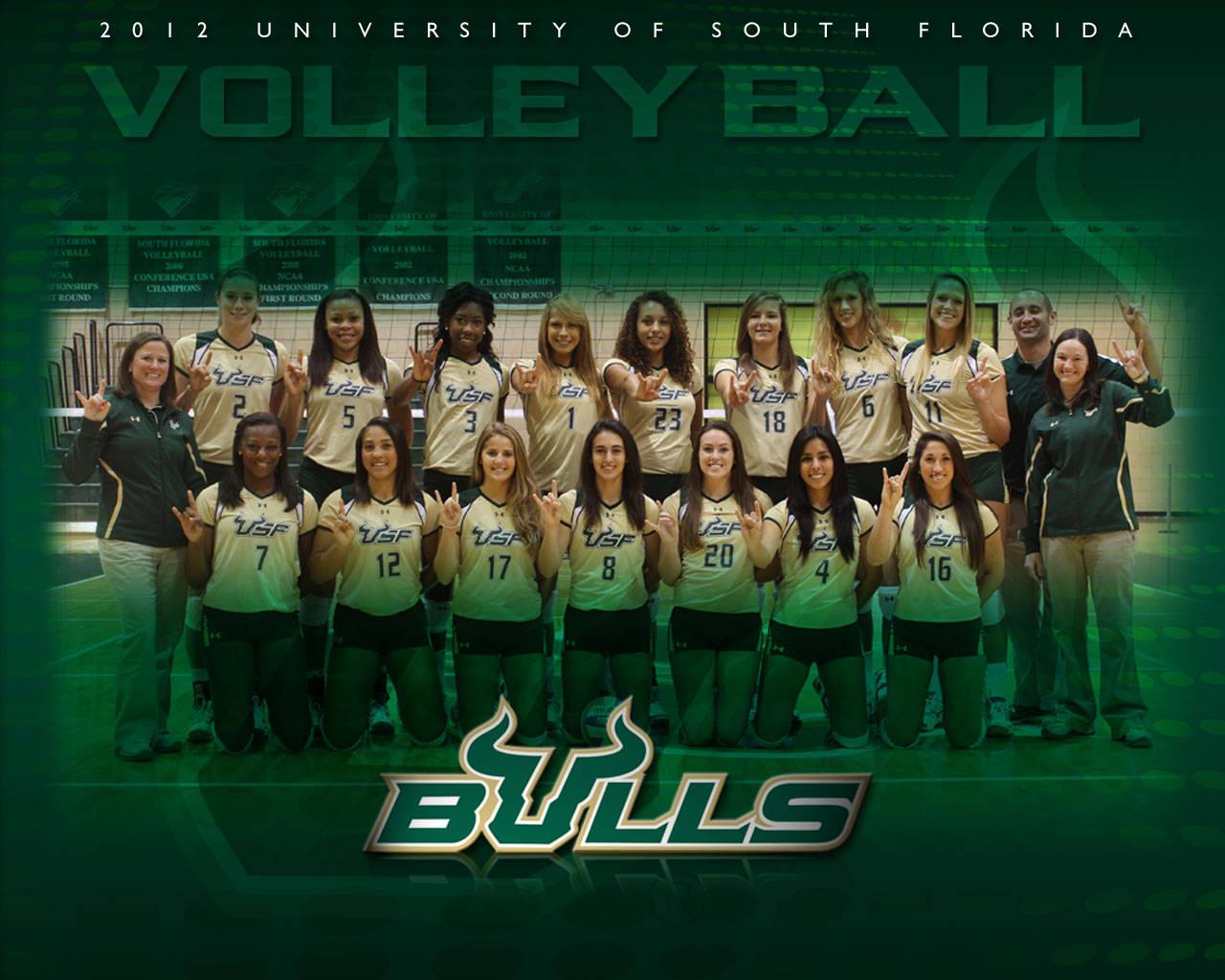 Usf Bulls Logo Wallpaper 2012 13 wallpapers 1280x1024