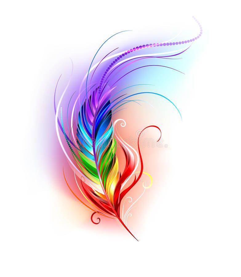 Rainbow feather on white stock vector Illustration of 783x900