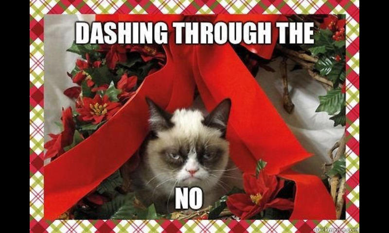 50133 grumpy cat christmas meme wallpaper 800x480 800x480