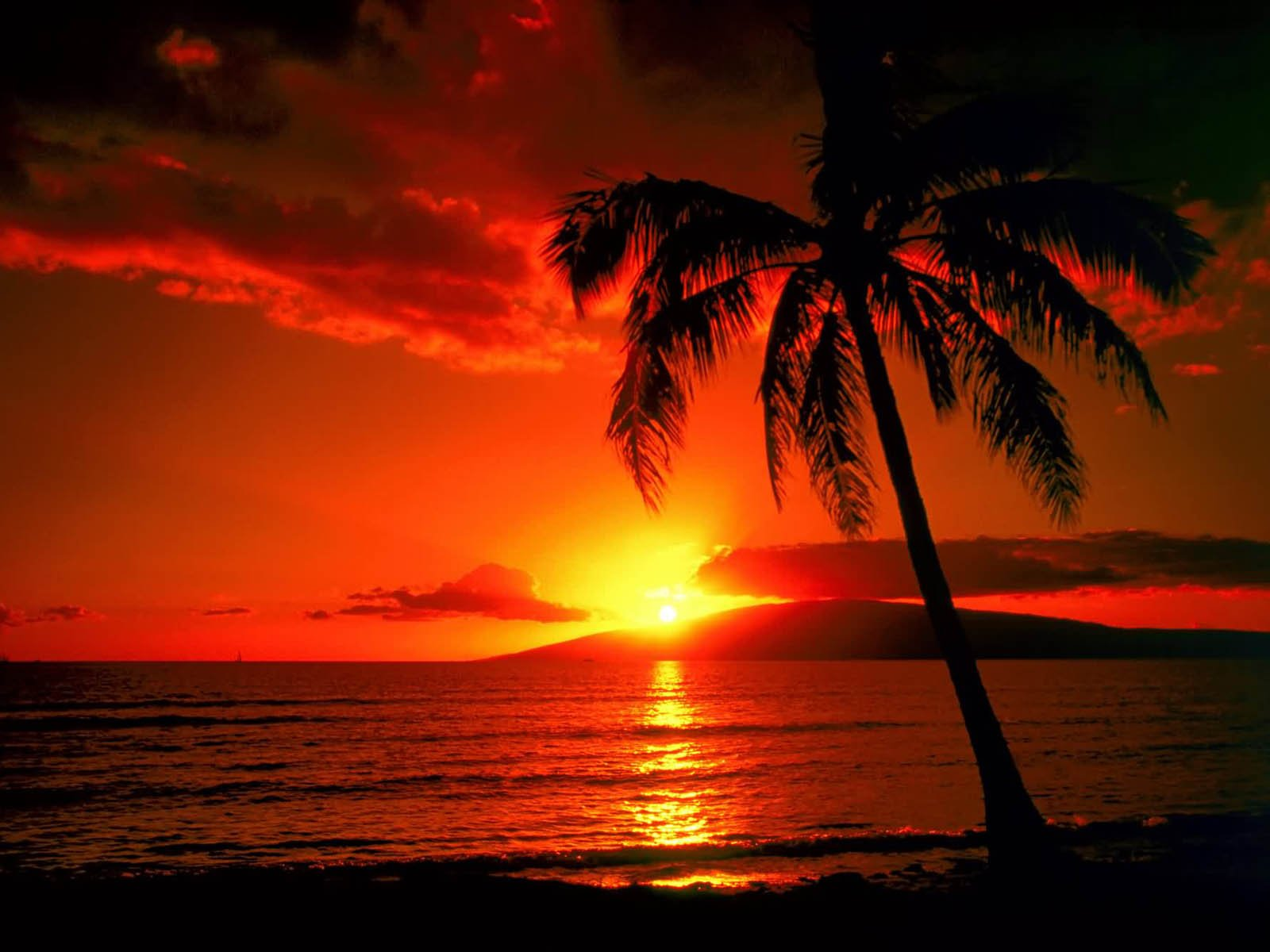 Island Sunset Wallpapers Images Photos Pictures and Backgrounds 1600x1200