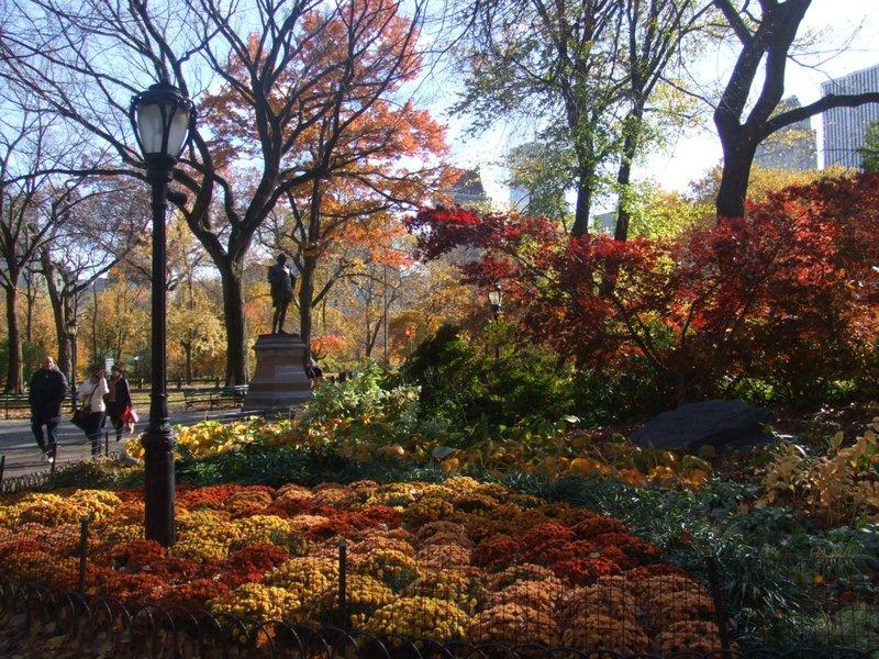 Autumn Central Park Wallpaper 5645578 autumn colours in 800x600
