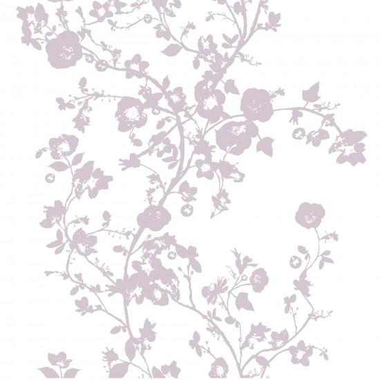 B Q Wallpaper WallpaperSafari