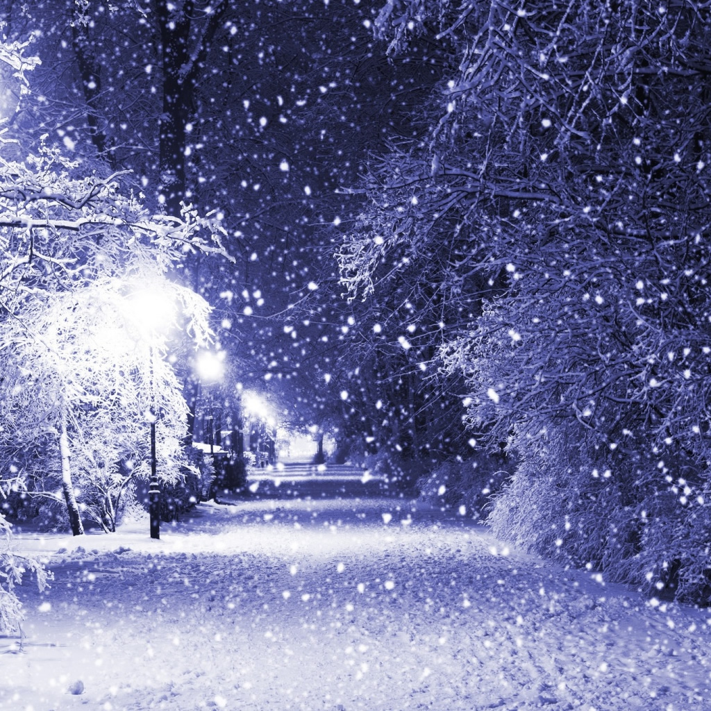 Winter Night iPad Wallpaper Download iPhone Wallpapers iPad 1024x1024
