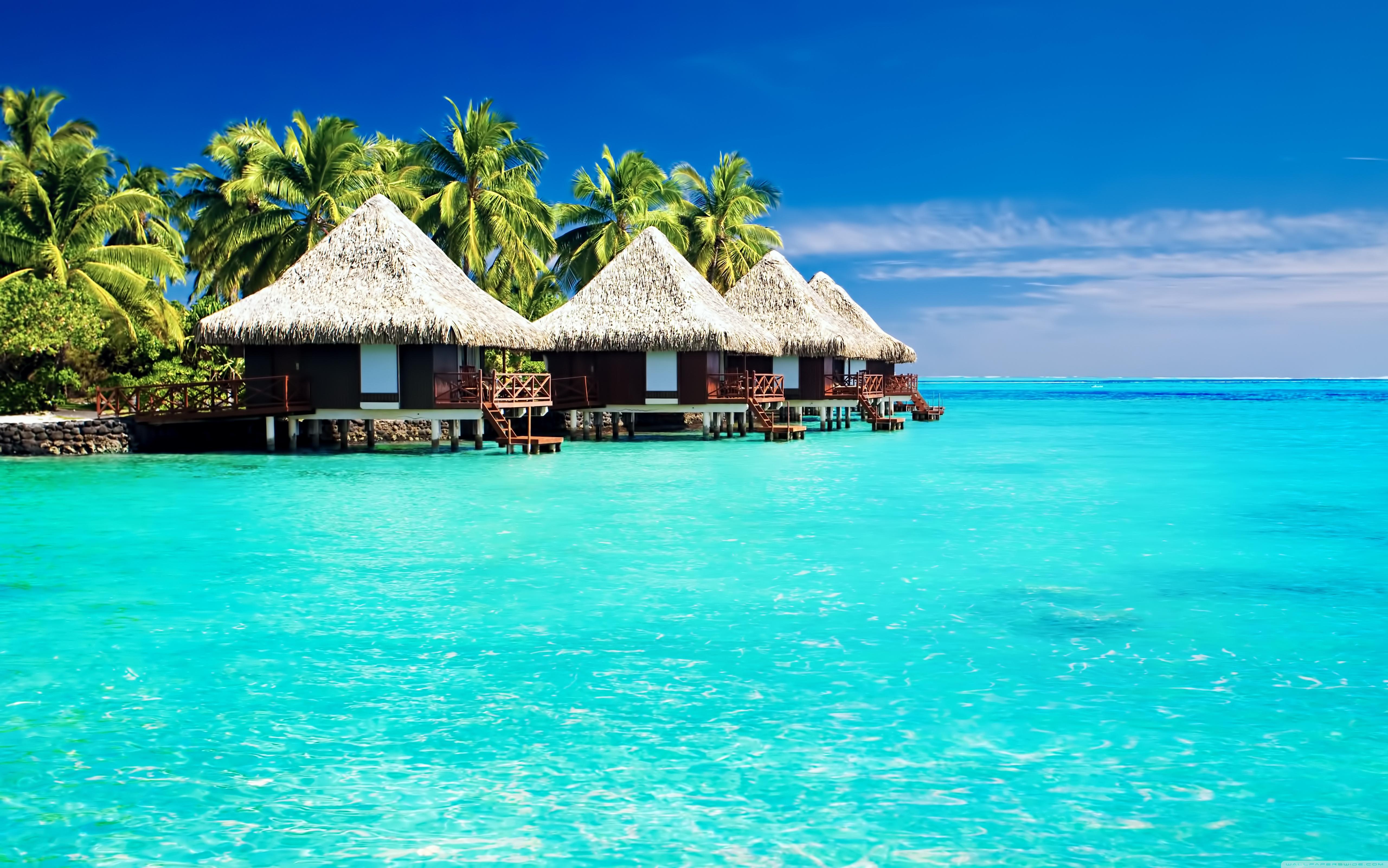 Tropical Desktop Wallpapers, Tropical Wallpaper   30 HD ...