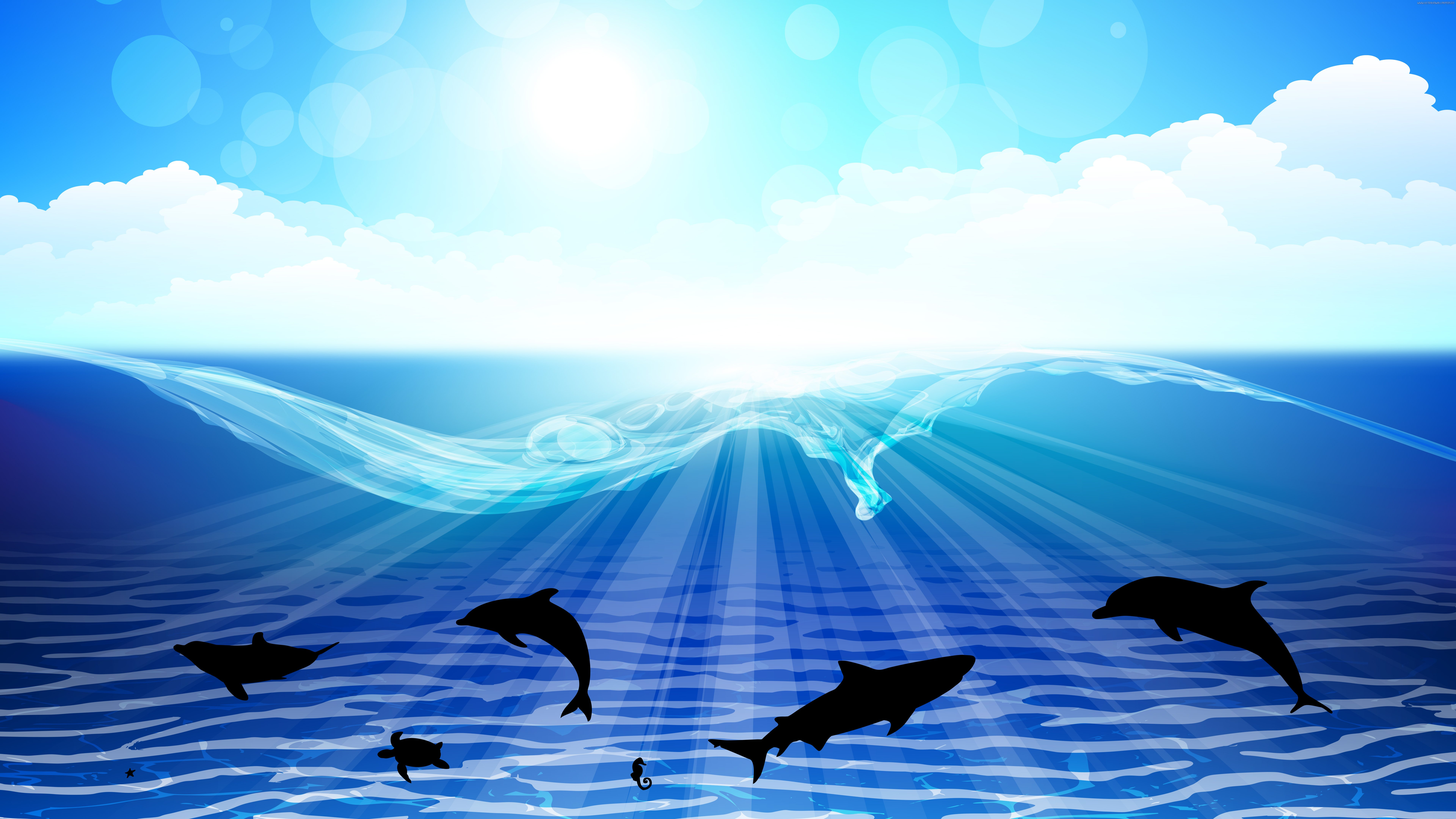 sea dolphin Ultra HD wallpapers 8K 7680x4320 4K 3840x2160 7680x4320