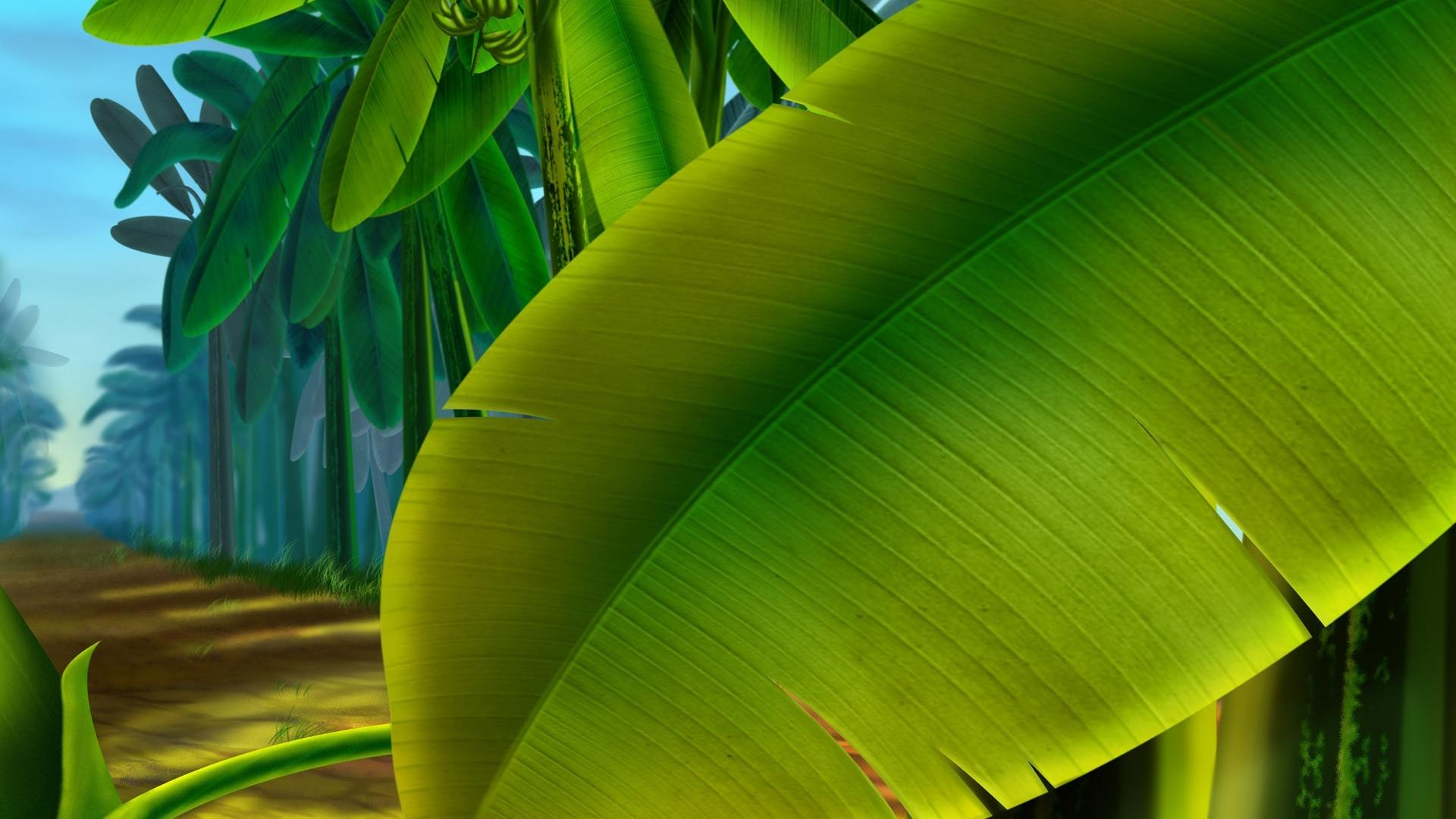 Multicolor leaves plants bananas palm fruit trees wallpaper 9768 1920x1080