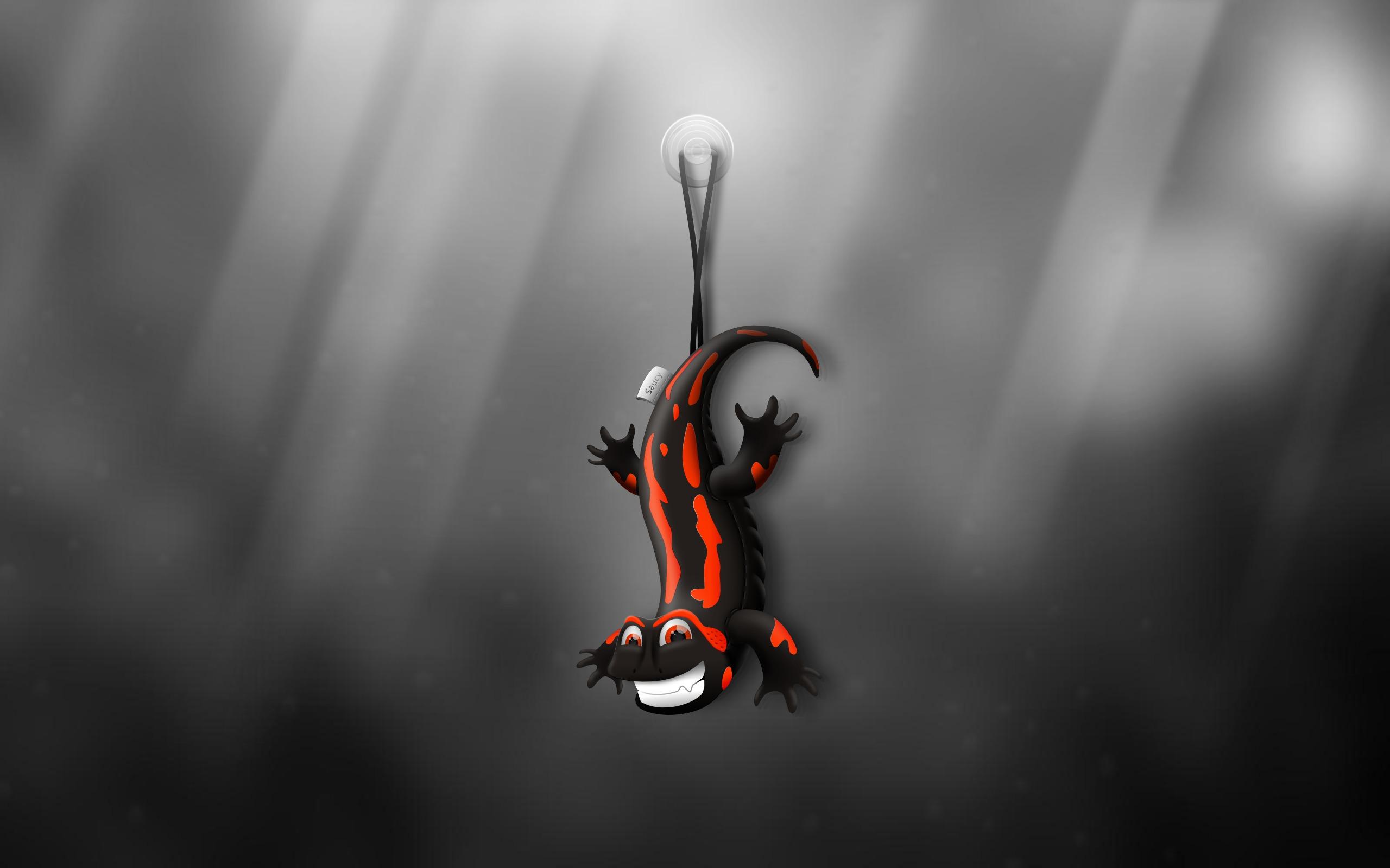 137 Wallpapers of Ubuntu 1310 Saucy Salamander Wallpaper Contest 2560x1600