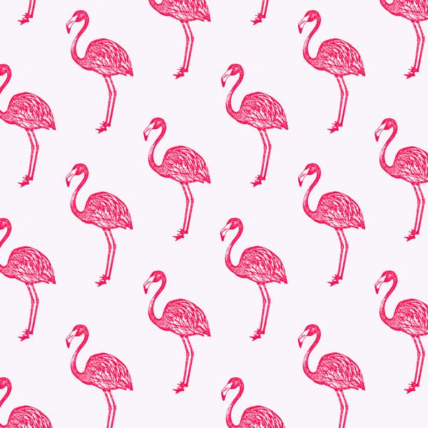 49 Flamingo Print Wallpaper On Wallpapersafari