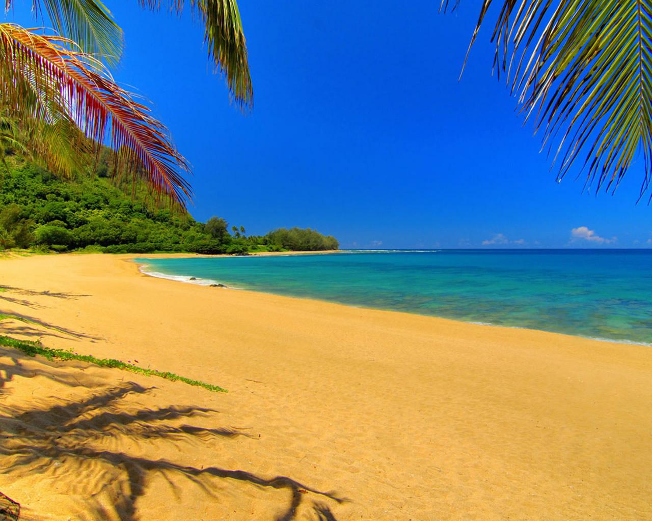Summer Beach 1280x1024