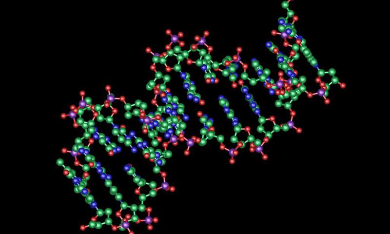Biology Wallpapers   screenshot 800x480