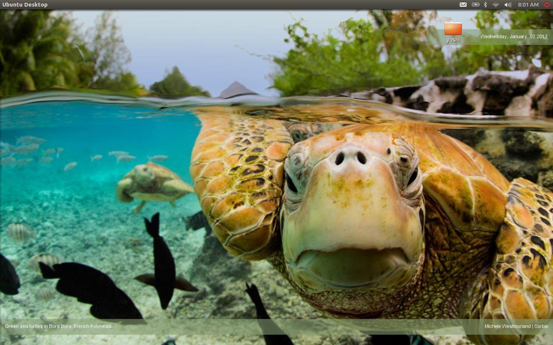 Bing Wallpaper Changer 1440x900