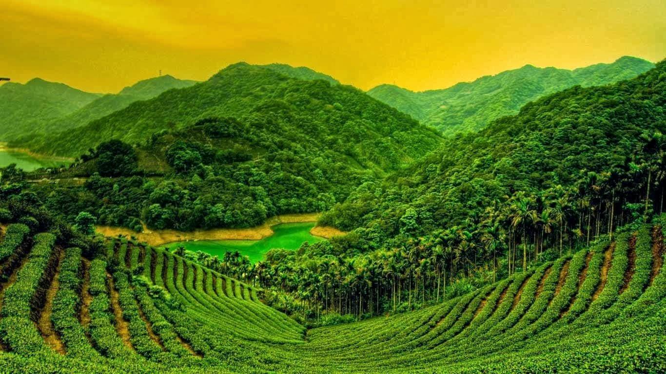 Daily Tamil Serial Desktop Hd Nature Wallpapers 1366x768