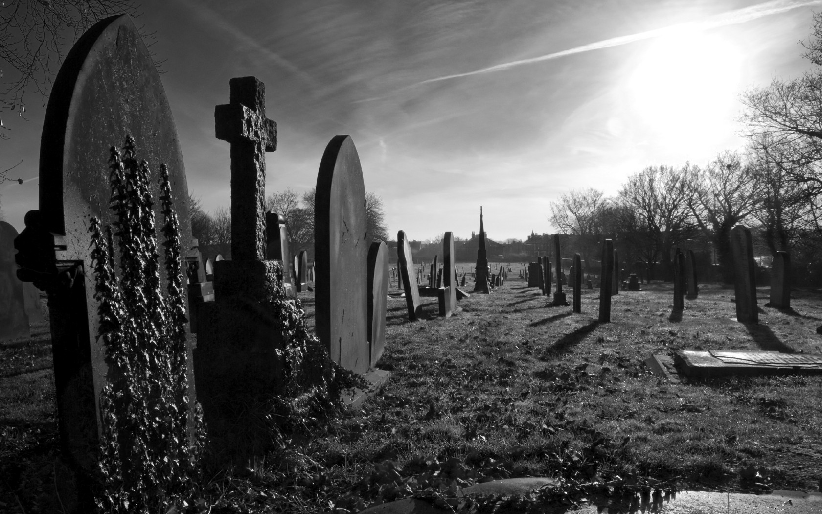 download black Dark Gothic Cemetery Wallpapers HD Desktop and 1680x1050