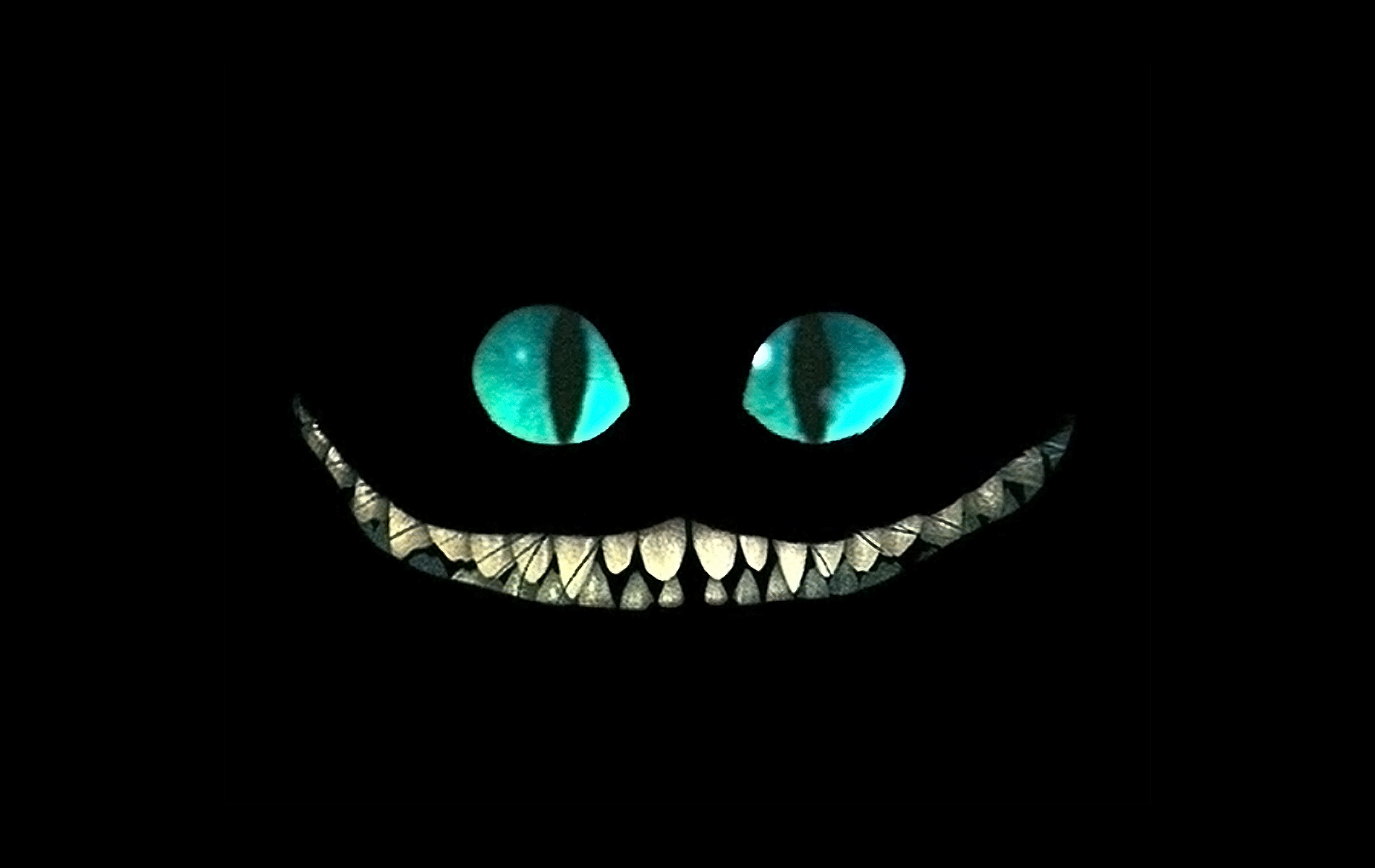 Download Cheshire Cat Wallpaper 1900x1200 Wallpoper 424715 1900x1200