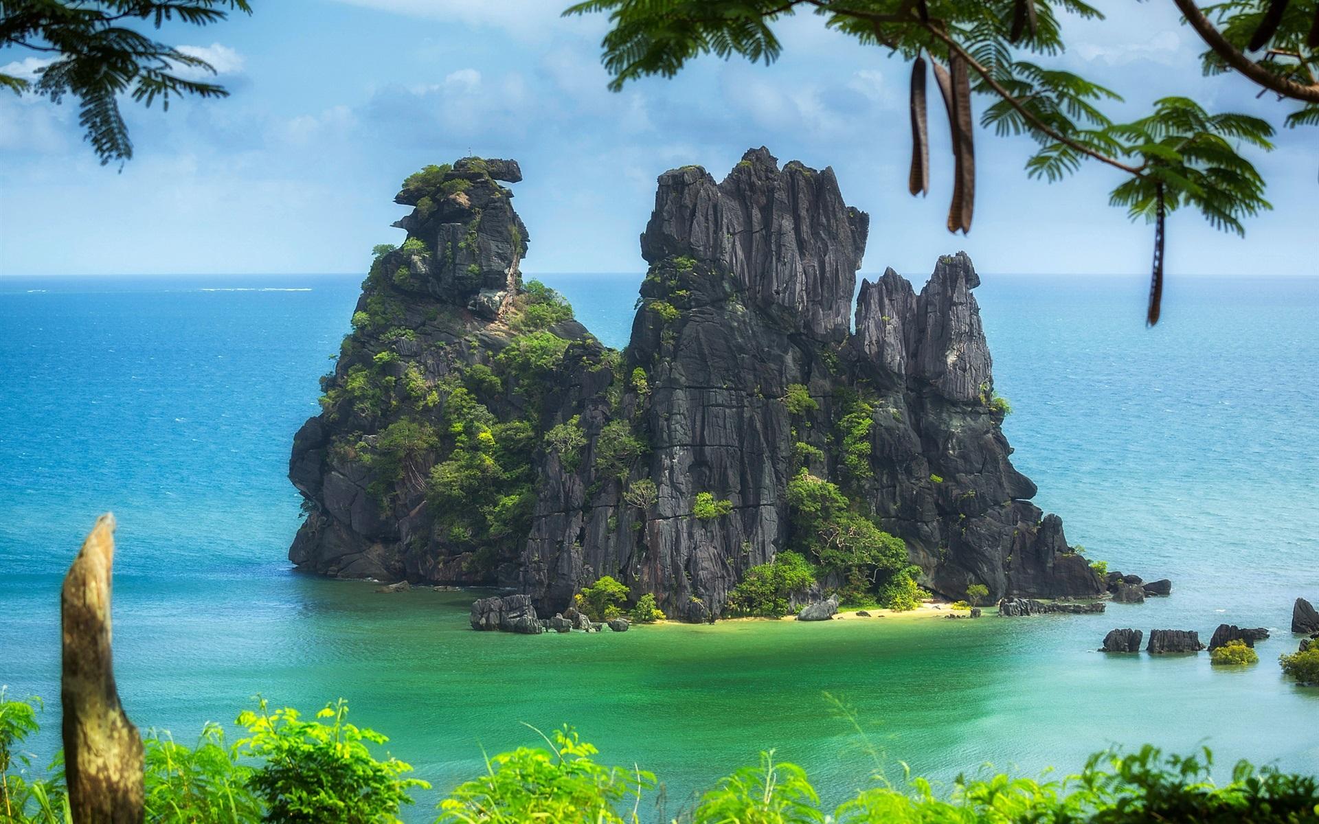 Wallpaper New Caledonia Pacific ocean island trees cliff 1920x1200