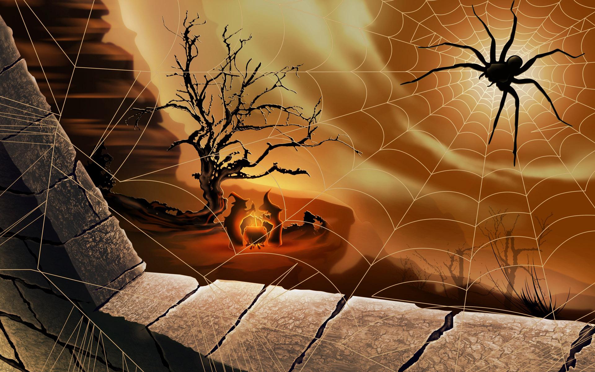 Spider Desktop Wallpapers FREE on Latorocom 1920x1200