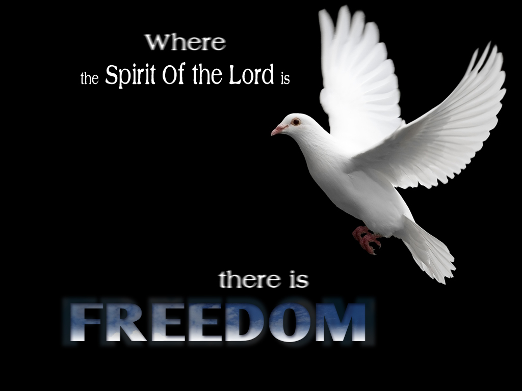 Quote Freedom Wallpaper   Christian Wallpapers and Backgrounds 1024x768
