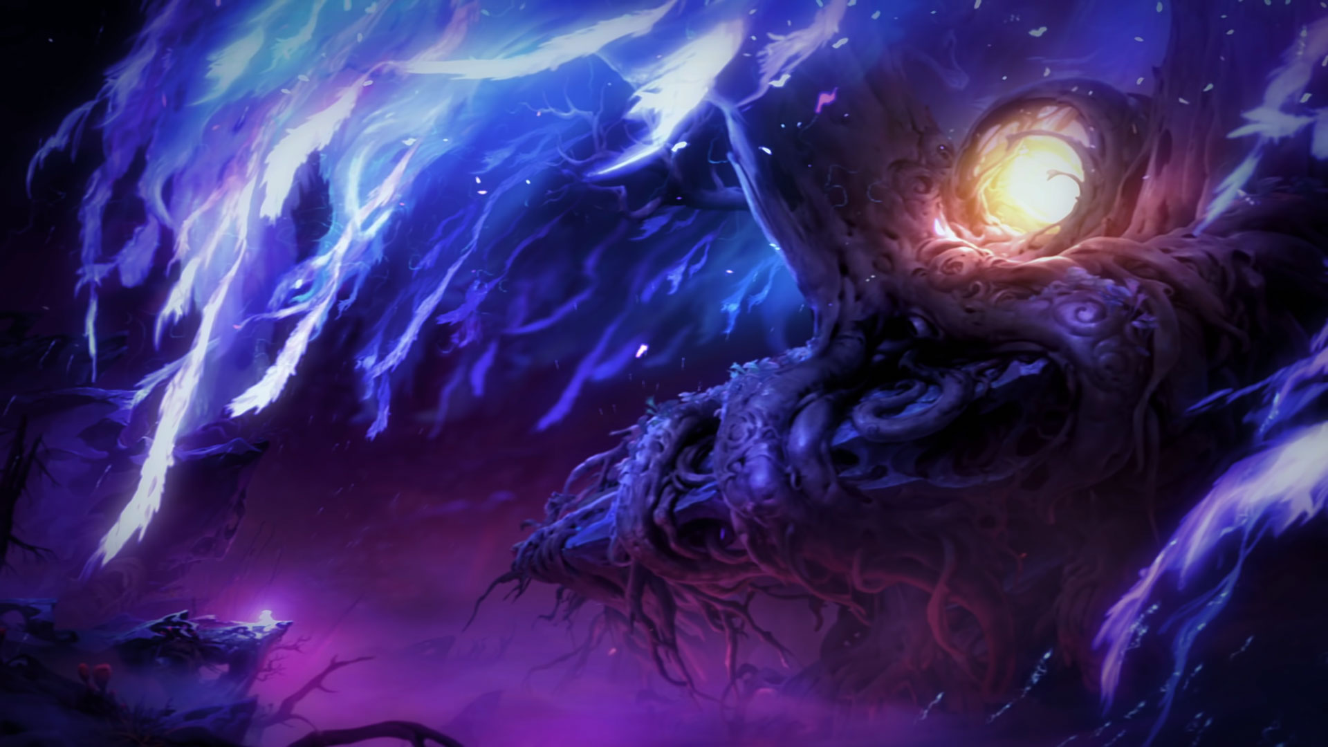 Ori and the Will of the Wisps Guide Release Date Wallpapers 1920x1080