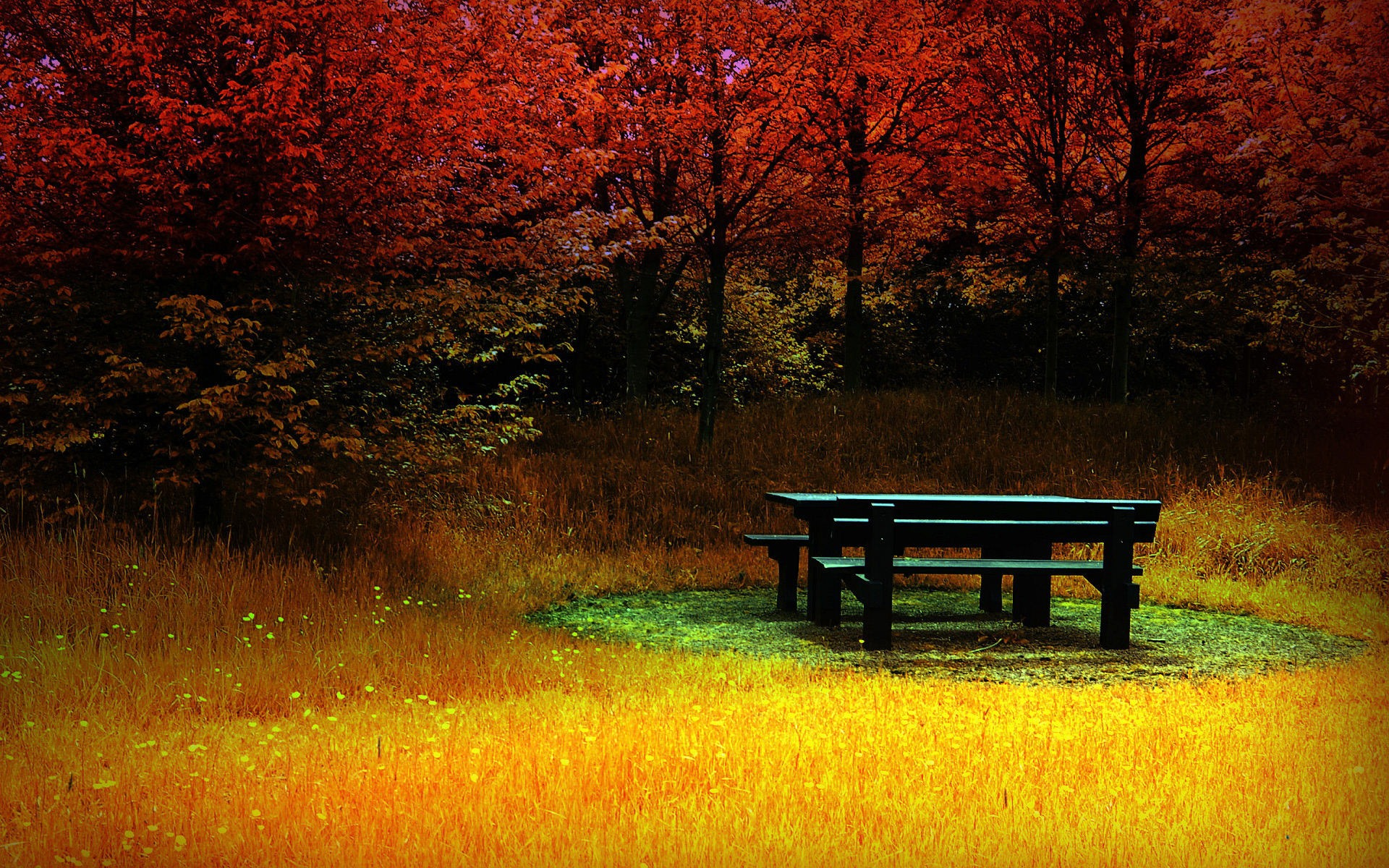 autumn wallpaper wallpapers widescreen nature fire downloadfiles 1920x1200