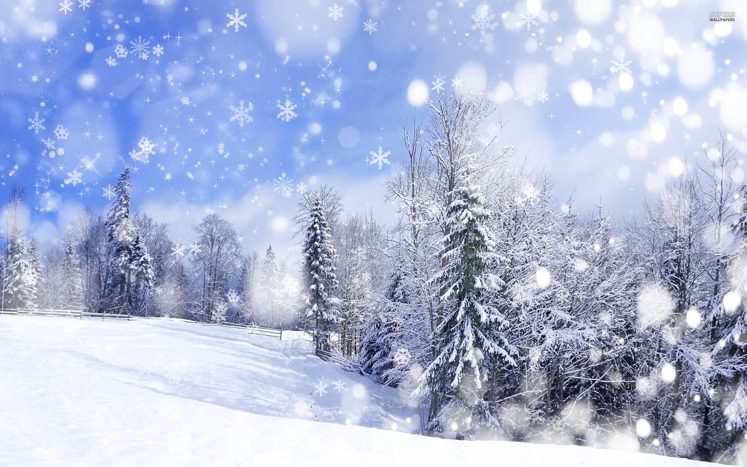 Snowfall Snowfall 2560x1600