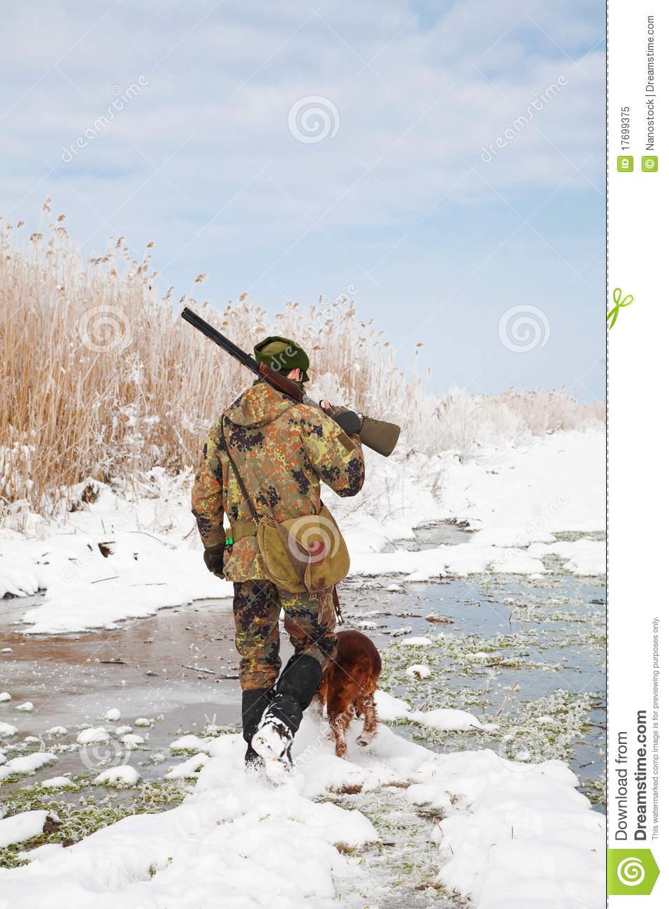 desktop fox hunting scene - photo #43