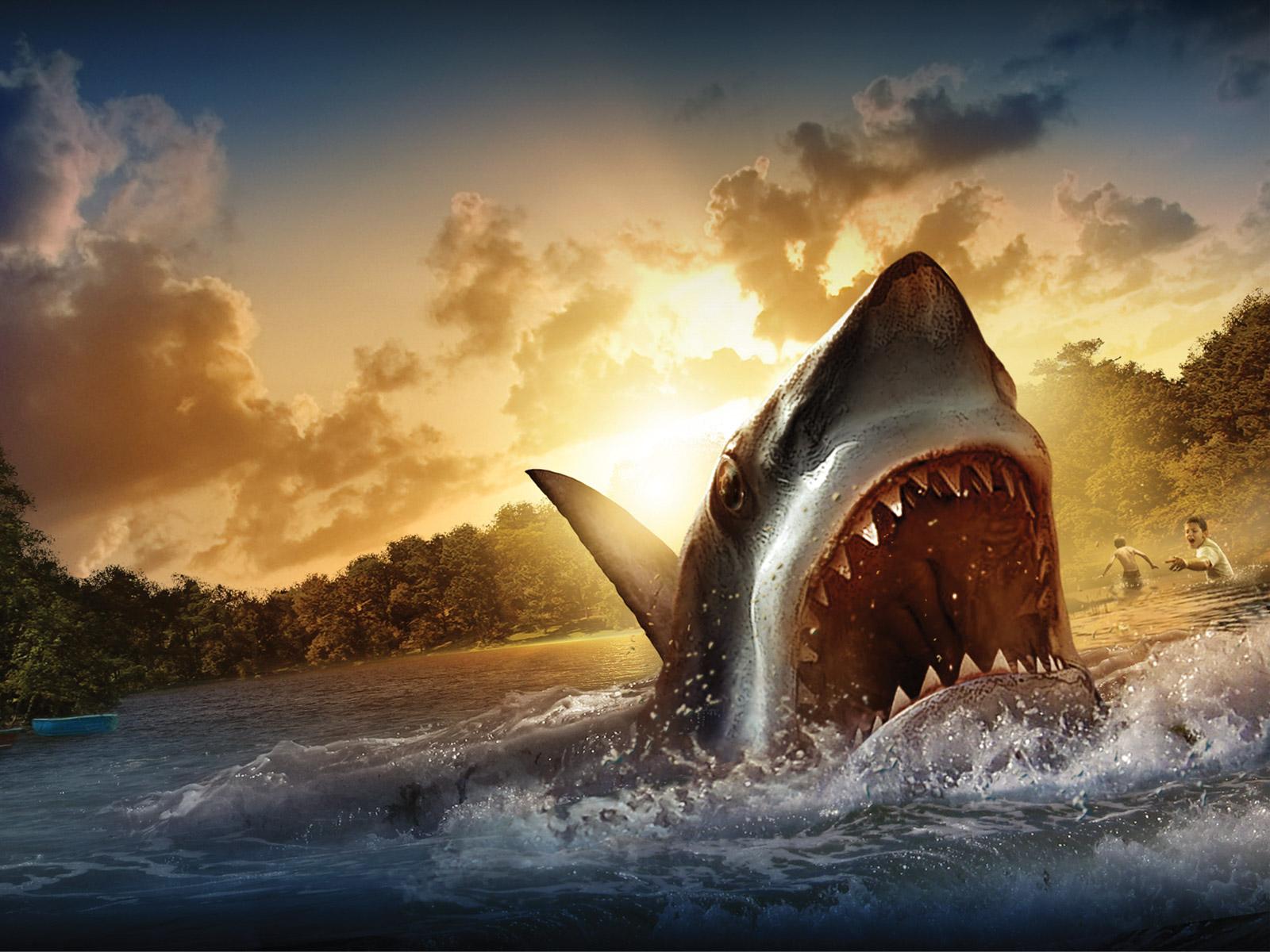 Shark live wallpaper.