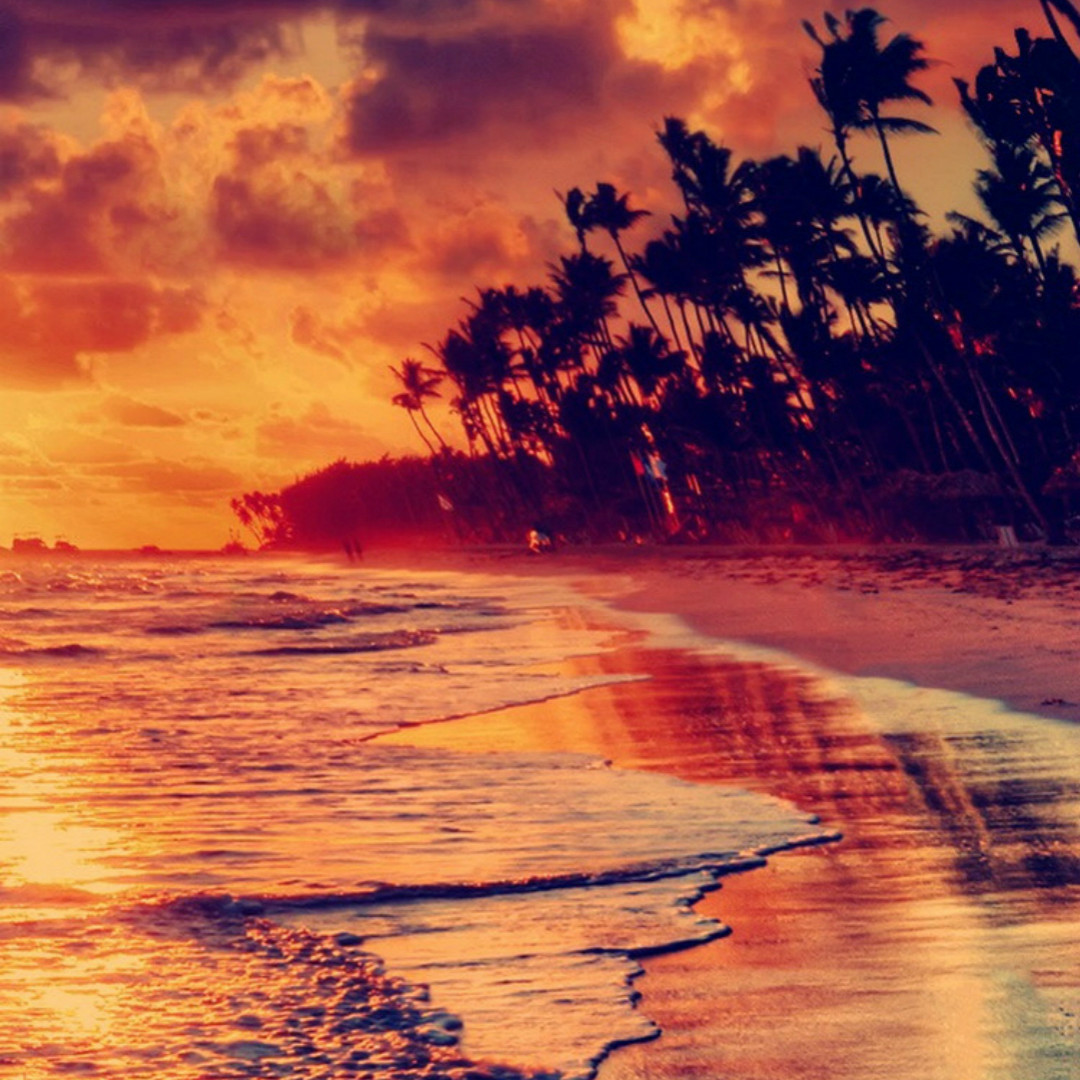 Nature Fire Sunset Beach HD Wallpaper 7597 1080x1080