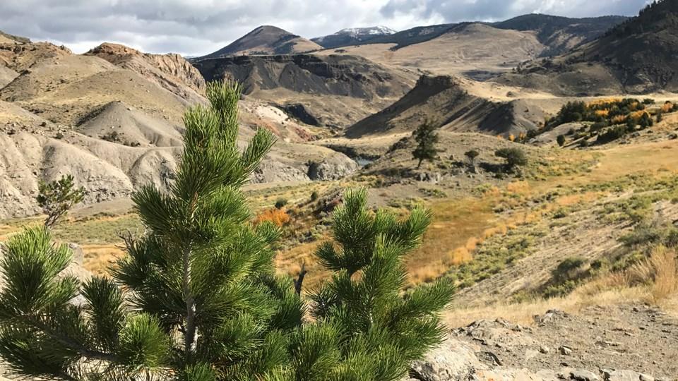 Rescue Creek Trail US National Park Service 960x540