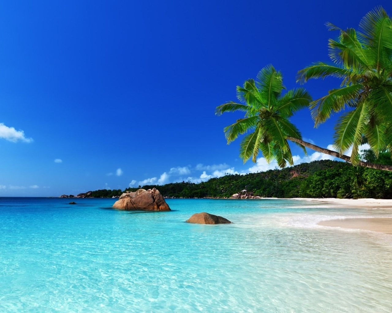 Tropical island Computer Wallpapers Desktop Backgrounds 1280x1024