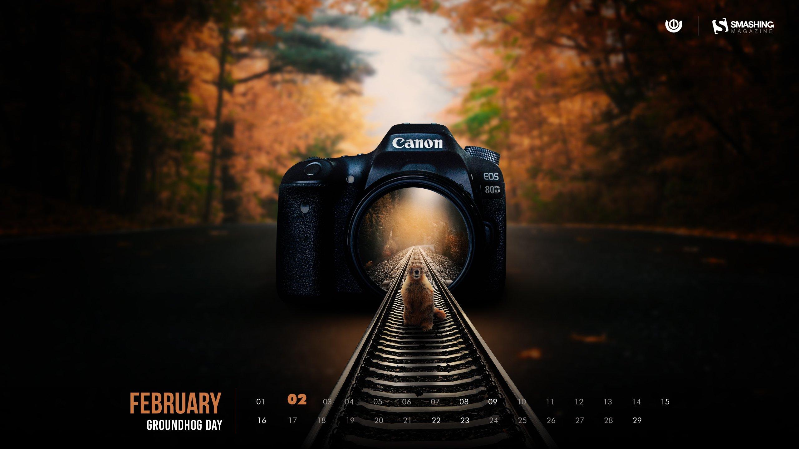 29 Days Of February 2020 Wallpapers Edition Smashing Magazine 2560x1440