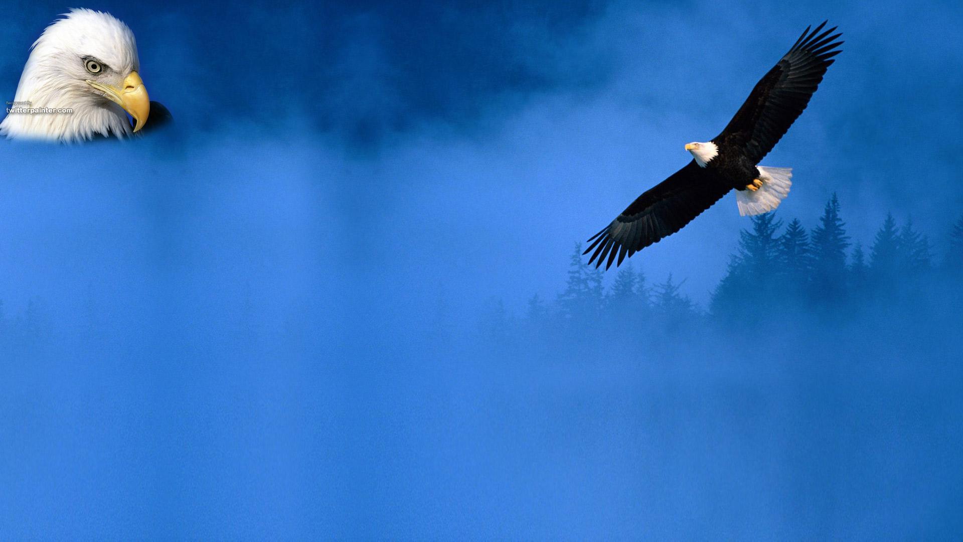 Desktop hd eagle and american flag images Download 3d HD colour design 1920x1080