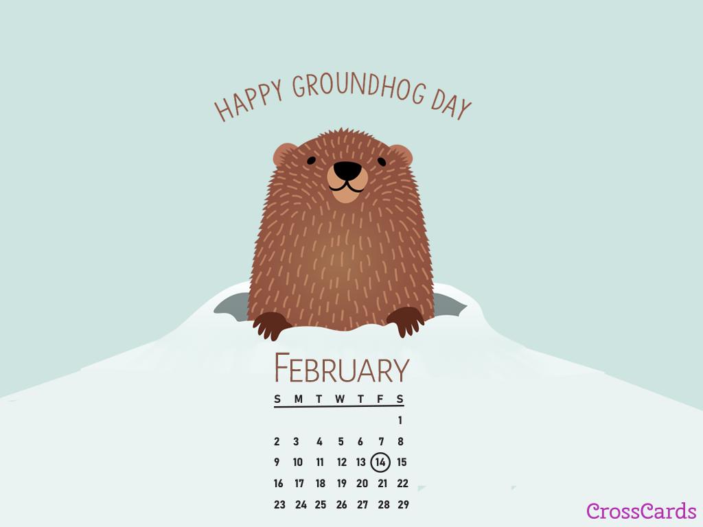 February 2020   Groundhog Day Desktop Calendar  February 1024x768