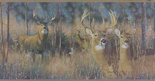 Deer Buck Wallpaper Buck And Doe Wallpaper Border 525x276