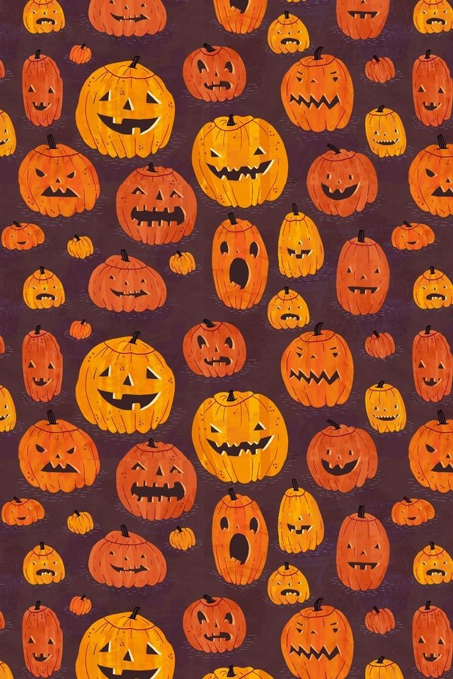 hd pumpkin wallpaper wallpapersafari