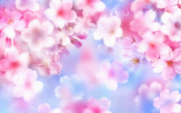 Wallpapers Cute Nature Wallpaper For Laptops   Nature Wallpapers for 600x375