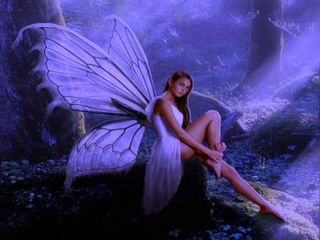 ... Free Butterfly Fairy The Wallpaper 1024x768 | Full HD Wallpapers