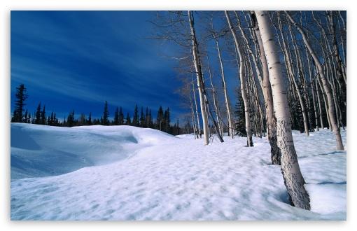 Winter Scenes 9 HD wallpaper for Standard 43 54 Fullscreen UXGA XGA 510x330