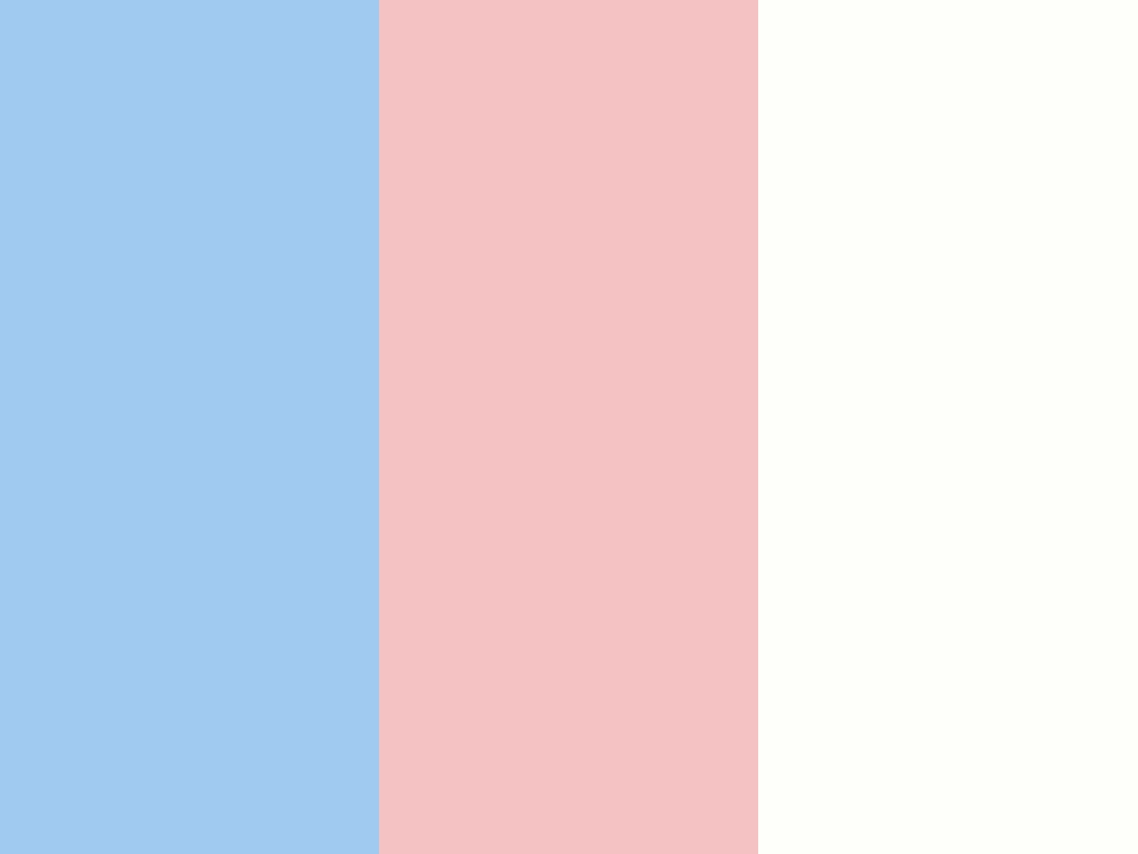 Baby Blue Eyes Baby Pink and Baby Powder Three Color Background 1600x1200