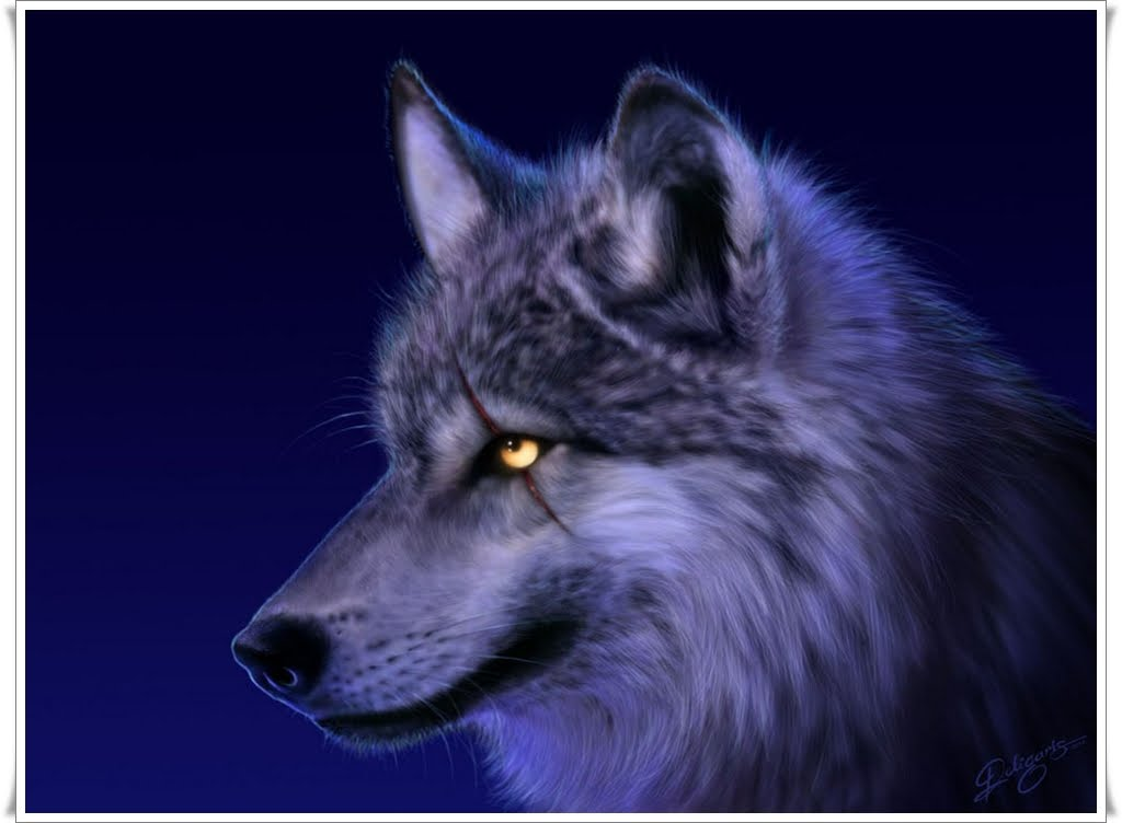 Moving wolf wallpapers wallpapersafari - Anime moving wallpaper for pc ...