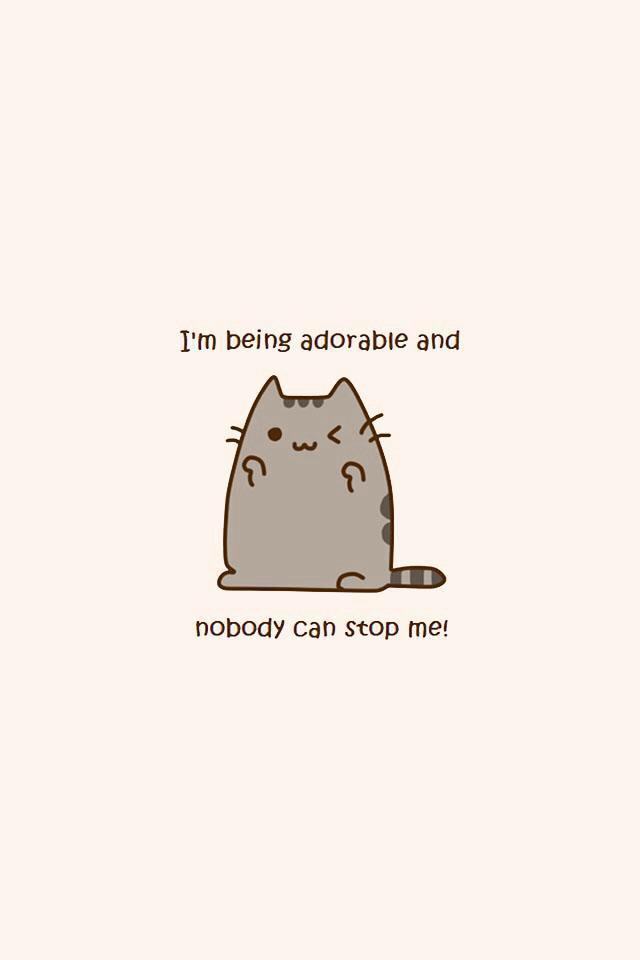 Pusheen Cats Pinterest 640x960