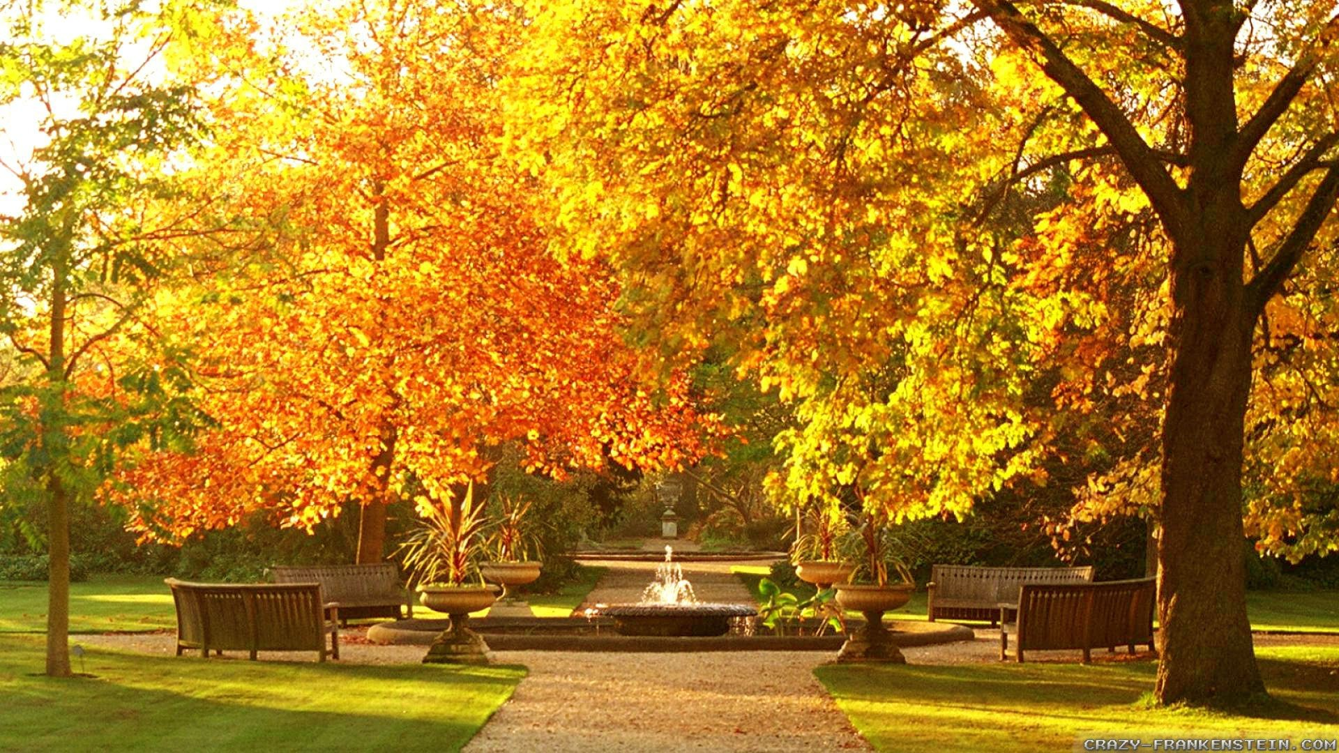 Beautiful Botanic Garden Autumn Wallpapers Widescreen 1920x1080