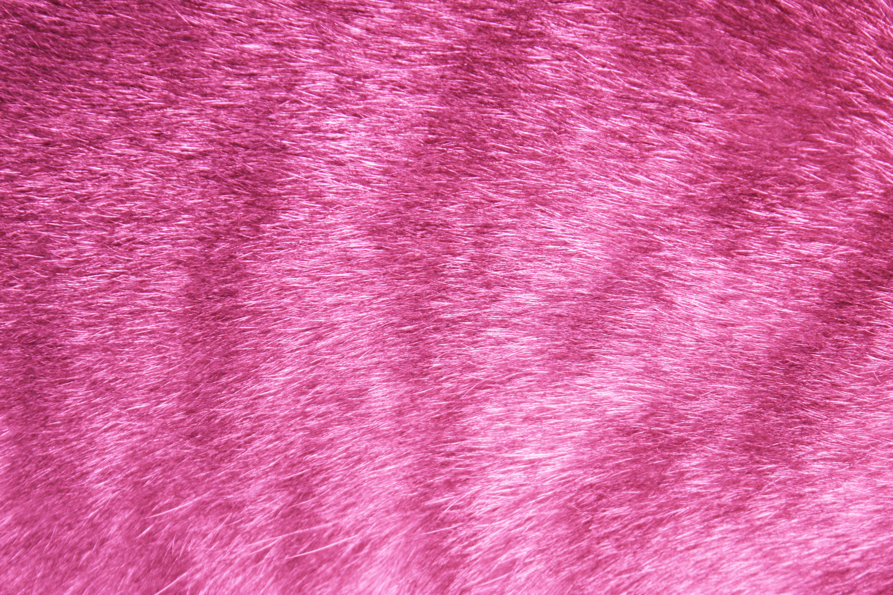 Pink Fur Wallpaper Wallpapersafari