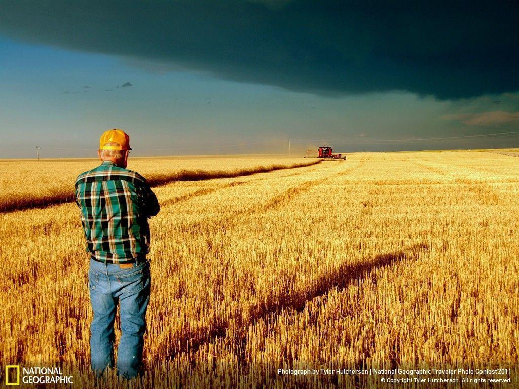 Farmer Wallpapers   Top Farmer Backgrounds   WallpaperAccess 1024x768